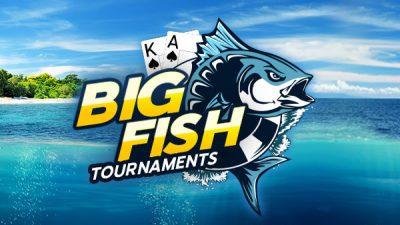 888poker: Loạt giải đấu Big Fish hàng ngày với 100.000 USD tiền thưởng đảm bảo