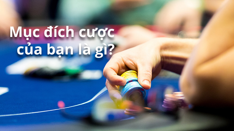 Mục đích đặt cược khi đánh bài poker là gì?