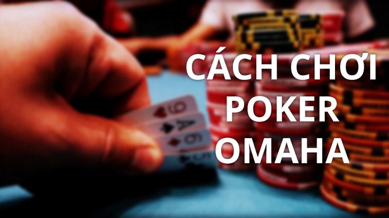 Hướng dẫn cách chơi poker Omaha cơ bản