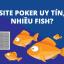 Site poker nào uy tín và nhiều fish để kiếm ăn nhất?